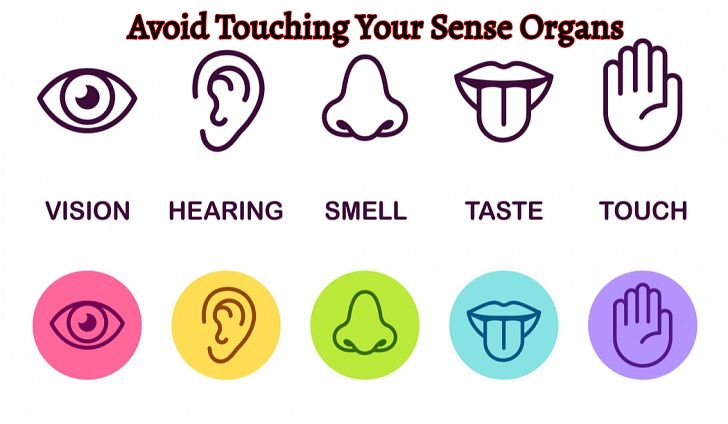 Avoid Touching Your Sense Organs