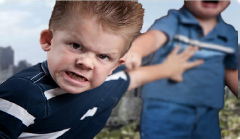 understanding misbehaviour