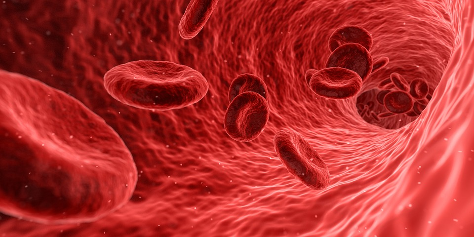 Treatment of Blood Cancer